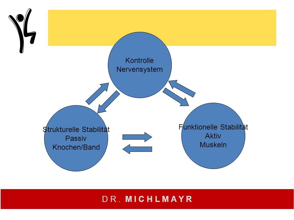 Kontrolle Nervensystem Funktionelle Stabilität Aktiv Muskeln Strukturelle Stabilität Passiv Knochen/Band