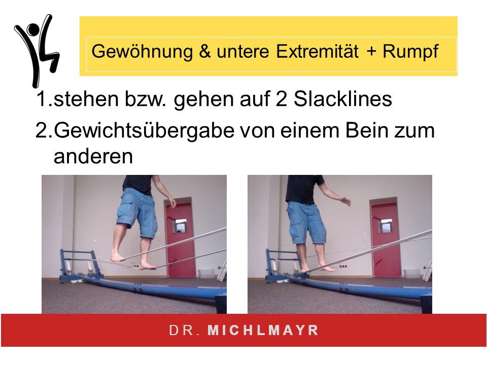 1. stehen bzw. gehen auf 2 Slacklines 2. Gewichtsübergabe von einem Bein zum anderen Gewöhnung & untere Extremität + Rumpf