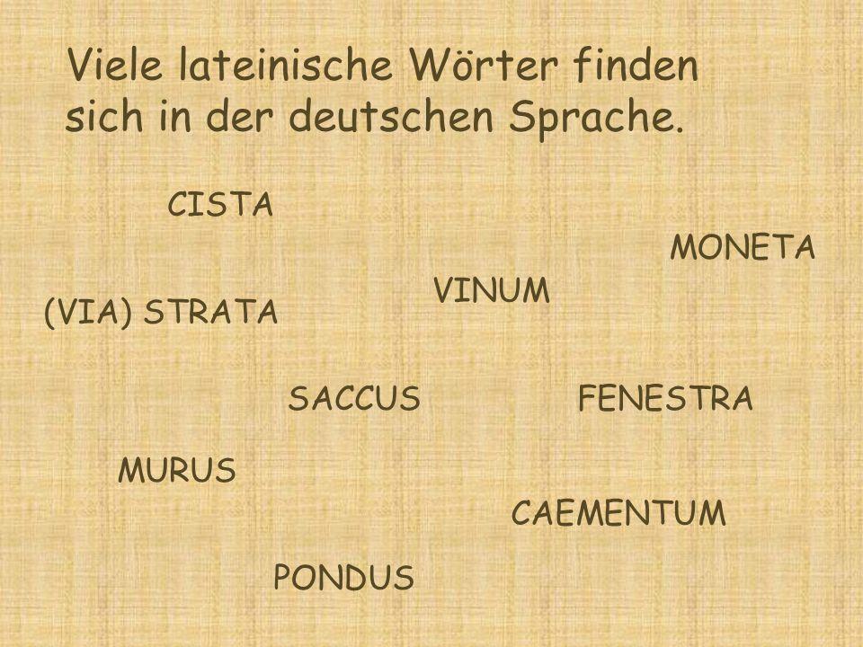 Viele lateinische Wörter finden sich in der deutschen Sprache. CISTA VINUM FENESTRA MONETA PONDUS SACCUS MURUS CAEMENTUM (VIA) STRATA