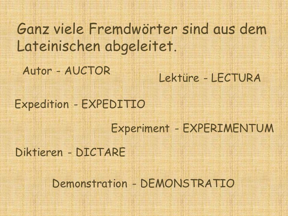 Ganz viele Fremdwörter sind aus dem Lateinischen abgeleitet. Autor - AUCTOR Lektüre - LECTURA Diktieren - DICTARE Demonstration - DEMONSTRATIO Experim