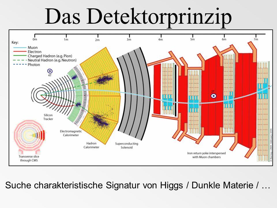 DM-WIMP NeutrinoElektron Jet WIMP-Erzeugung am LHC Beispiel: Erzeugung von squarks und gluinos pp gluino squark undetektiert 5 Jets 1 Elektron fehlende Energie Vorsicht Untergund: z.B.