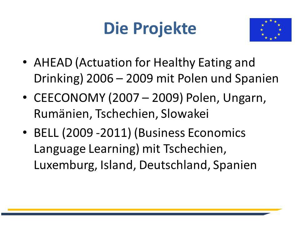Die Projekte EBV (Einander Besser Verstehen)(2010 – 2012) bilaterales Projekt mit Rumänien CLYDE (2013 – 2015) Italien und Deutschland ESCAPE (Enhanced Skills, Competence and Practice for the Economy) (2014 – 2017) mit Ungarn, Slowenien, Slowakei, Rumänien, Bulgarien, Tschechien