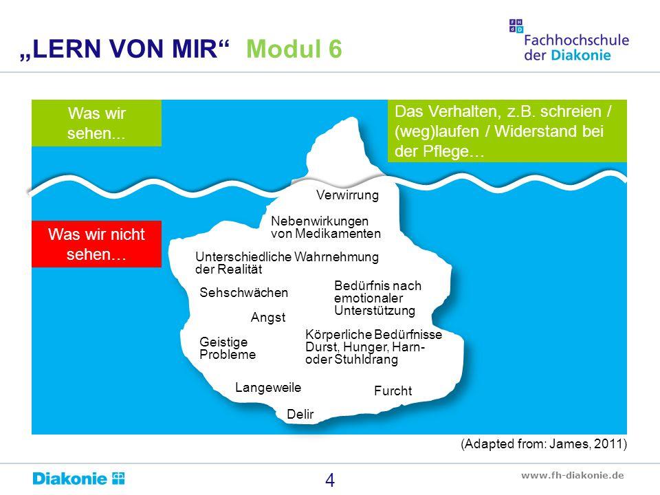 """www.fh-diakonie.de 4 """"LERN VON MIR"""" Modul 6 Was wir sehen... Was wir nicht sehen… Das Verhalten, z.B. schreien / (weg)laufen / Widerstand bei der Pfle"""