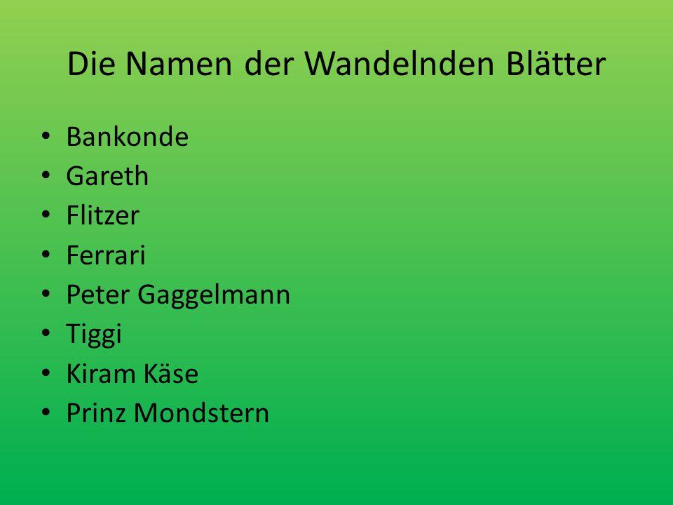 Die Namen der Wandelnden Blätter Bankonde Gareth Flitzer Ferrari Peter Gaggelmann Tiggi Kiram Käse Prinz Mondstern