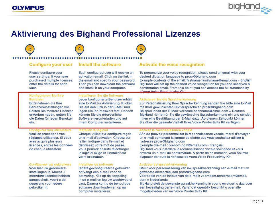 Aktivierung des Bighand Professional Lizenzes Page 11
