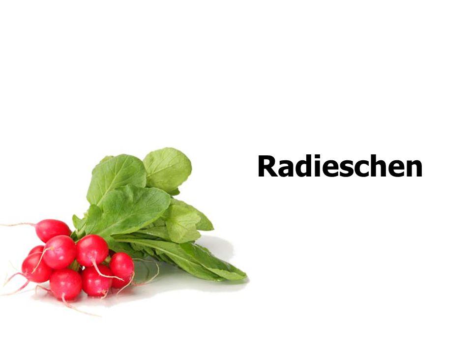 Radieschen