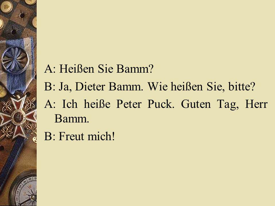 A: Heißen Sie Bamm? B: Ja, Dieter Bamm. Wie heißen Sie, bitte? A: Ich heiße Peter Puck. Guten Tag, Herr Bamm. B: Freut mich!