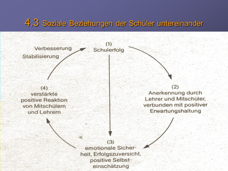 4.3 Soziale Beziehungen der Schüler untereinander