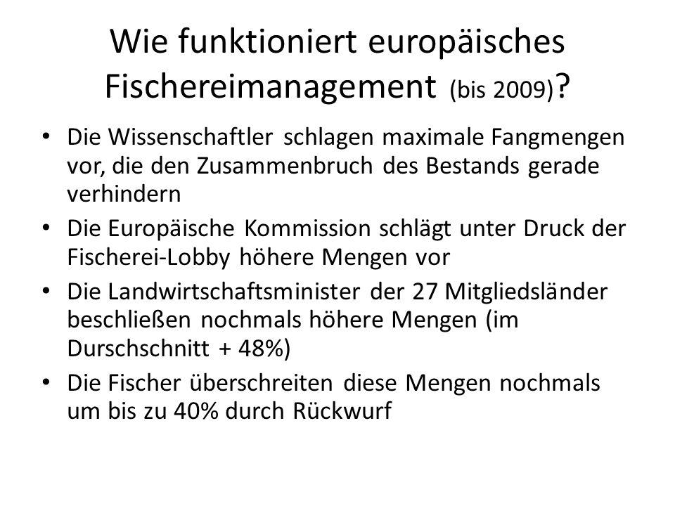 Wie funktioniert europäisches Fischereimanagement (bis 2009) ? Die Wissenschaftler schlagen maximale Fangmengen vor, die den Zusammenbruch des Bestand