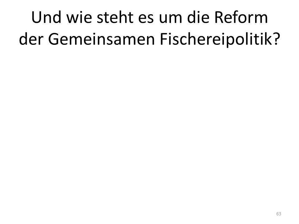 Und wie steht es um die Reform der Gemeinsamen Fischereipolitik 63