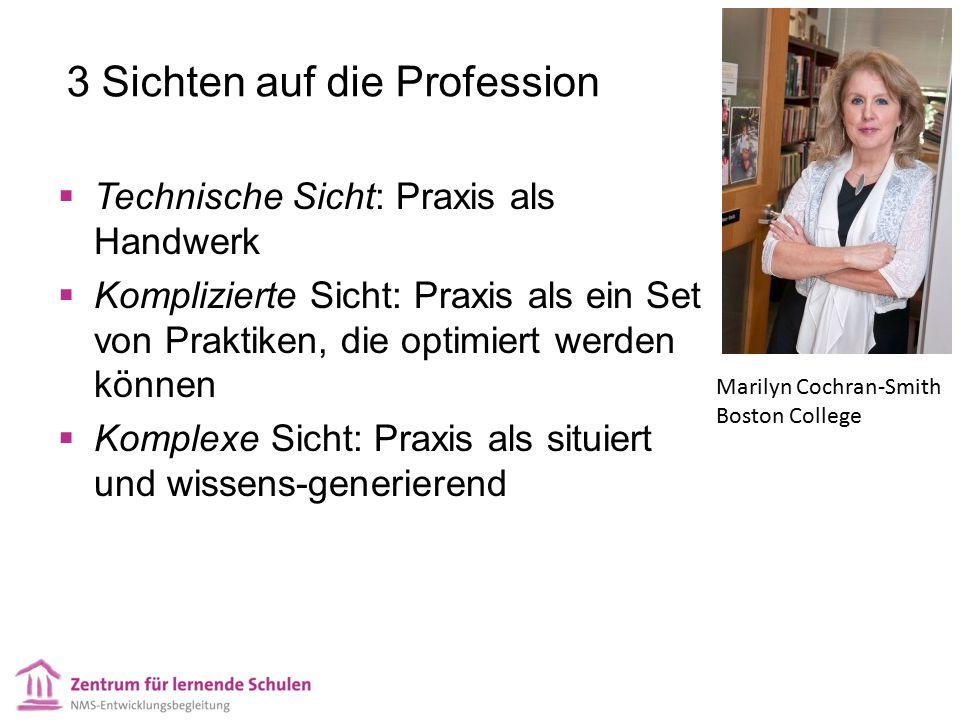 3 Sichten auf die Profession  Technische Sicht: Praxis als Handwerk  Komplizierte Sicht: Praxis als ein Set von Praktiken, die optimiert werden könn
