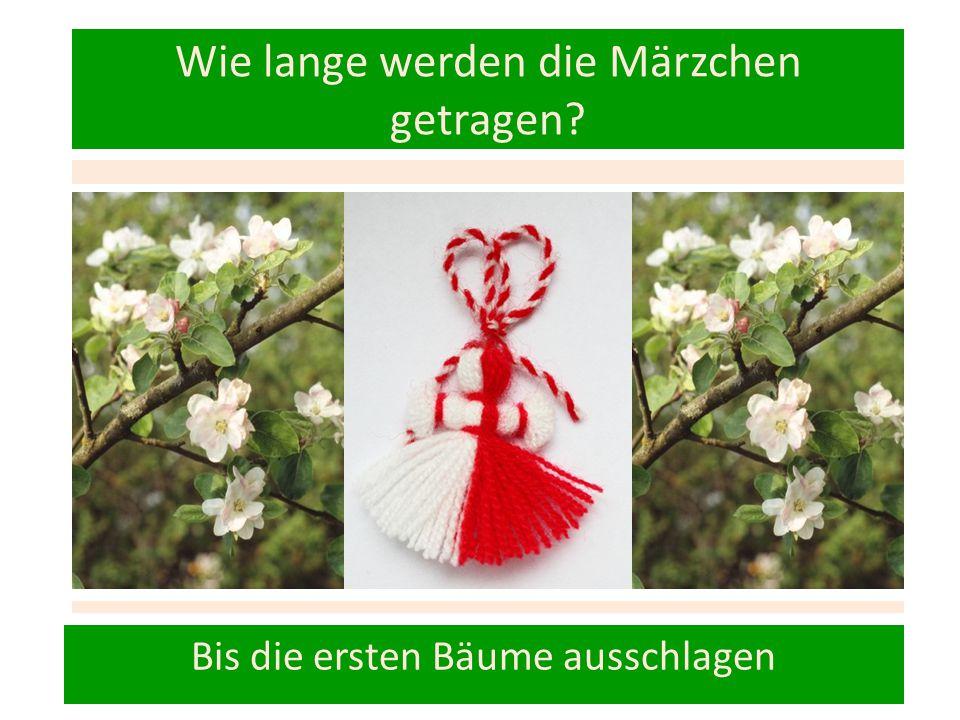 Wie lange werden die Märzchen getragen? Bis die ersten Bäume ausschlagen