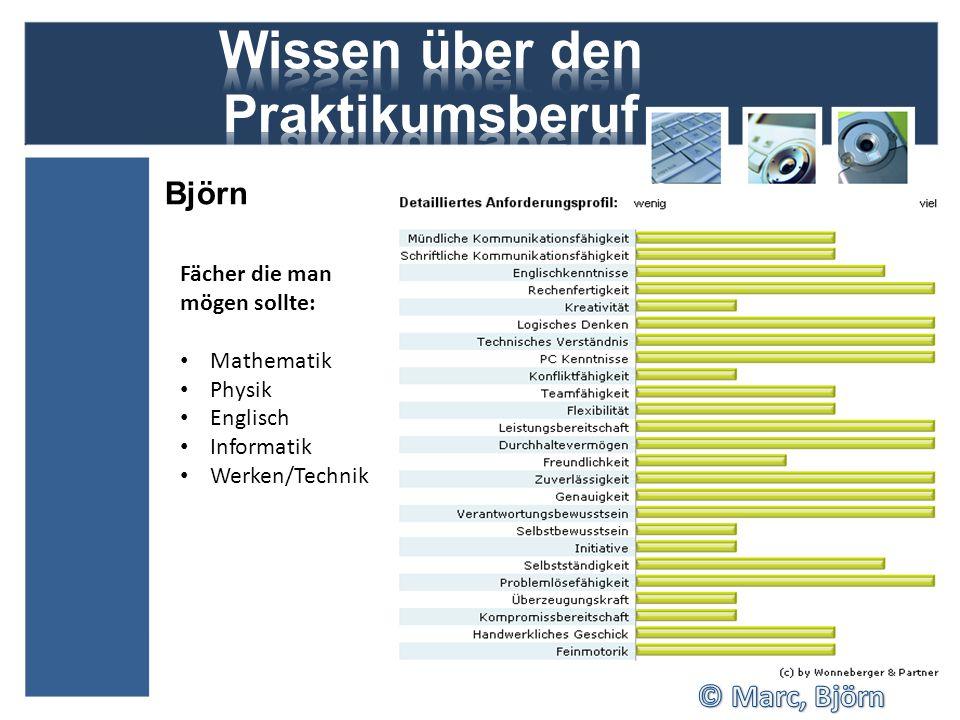Björn Fächer die man mögen sollte: Mathematik Physik Englisch Informatik Werken/Technik
