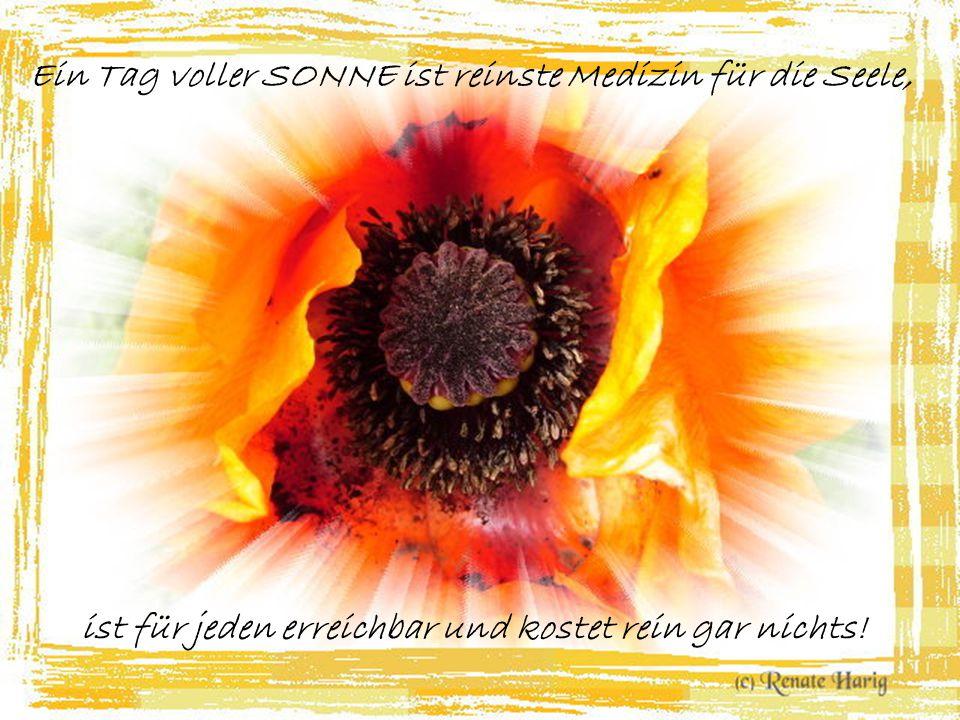 Blumenduft und Sonnenschein, sag' was kann noch schöner sein?