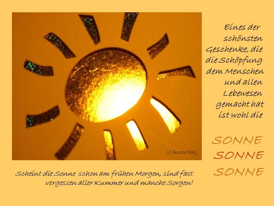 Eines der schönsten Geschenke, die die Schöpfung dem Menschen und allen Lebewesen gemacht hat ist wohl die SONNE Scheint die Sonne schon am frühen Morgen, sind fast vergessen aller Kummer und manche Sorgen.