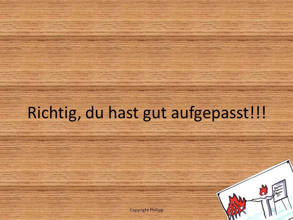 Richtig, du hast gut aufgepasst!!! Copyright Philipp12