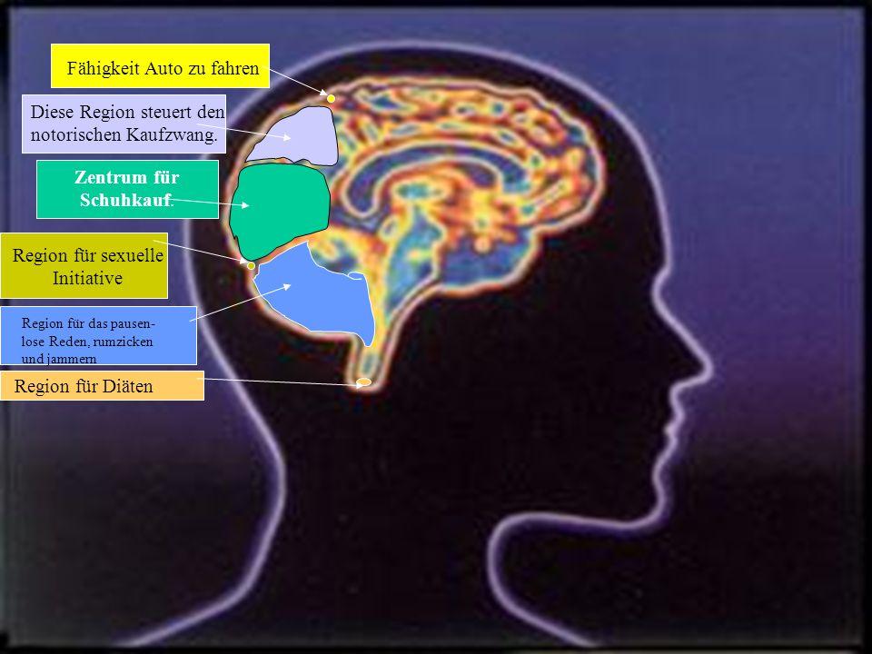 Das Geheimnis des männlichen Gehirns ist noch nicht enthüllt, aber es wird daran gearbeitet....