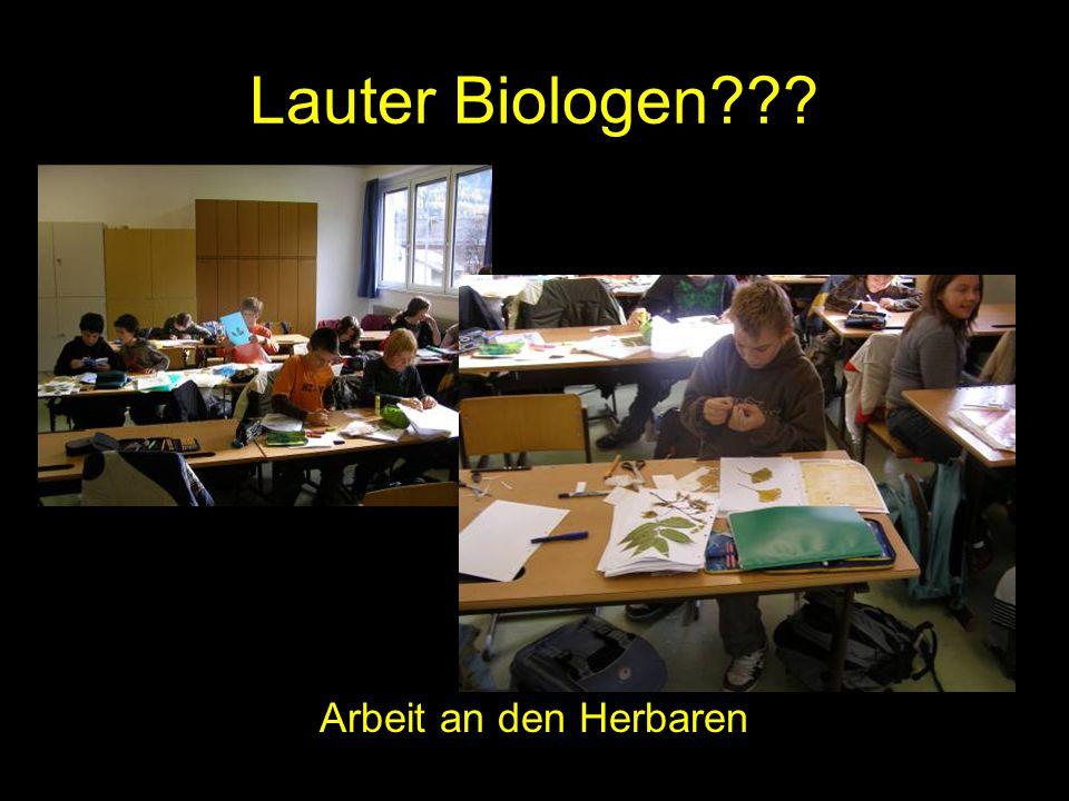 Lauter Biologen??? Arbeit an den Herbaren