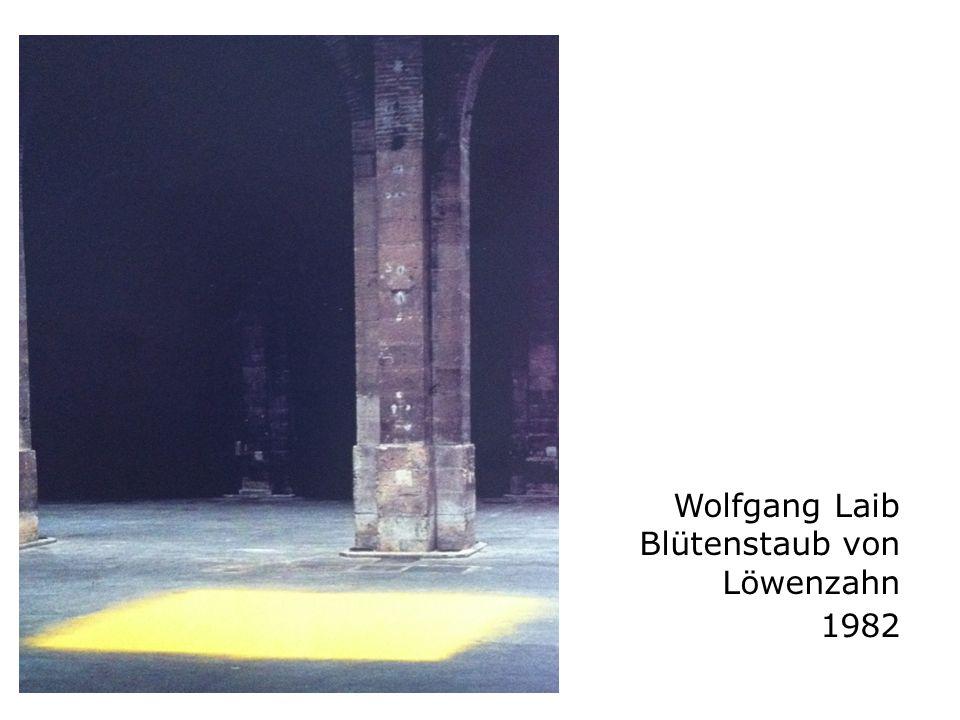 Wolfgang Laib Blütenstaub von Löwenzahn 1982