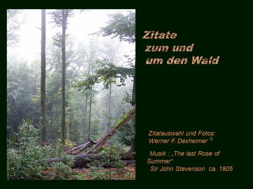 Zitatauswahl und Fotos: Werner F.