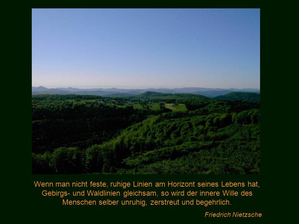 Weißt du nicht, dass die Wälder das Leben eines Landes sind. Babylonsche Keilschrift