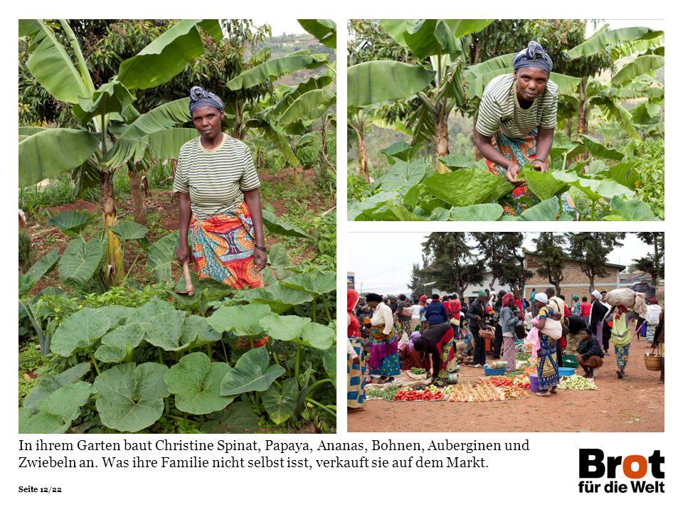 Seite 12/22 In ihrem Garten baut Christine Spinat, Papaya, Ananas, Bohnen, Auberginen und Zwiebeln an. Was ihre Familie nicht selbst isst, verkauft si