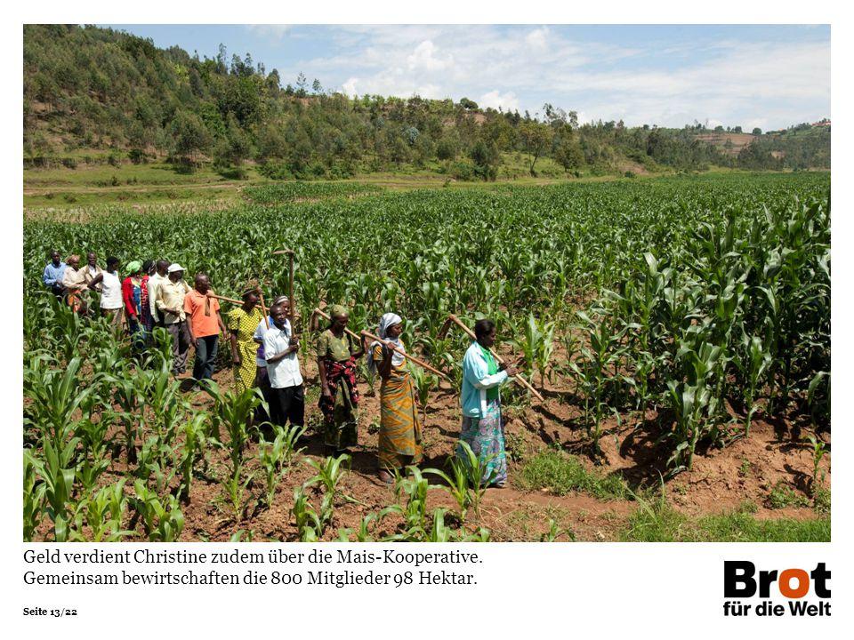 Seite 13/22 Geld verdient Christine zudem über die Mais-Kooperative. Gemeinsam bewirtschaften die 800 Mitglieder 98 Hektar.