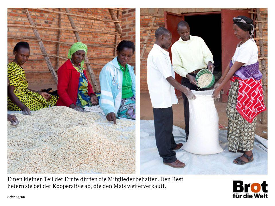 Seite 14/22 Einen kleinen Teil der Ernte dürfen die Mitglieder behalten. Den Rest liefern sie bei der Kooperative ab, die den Mais weiterverkauft.