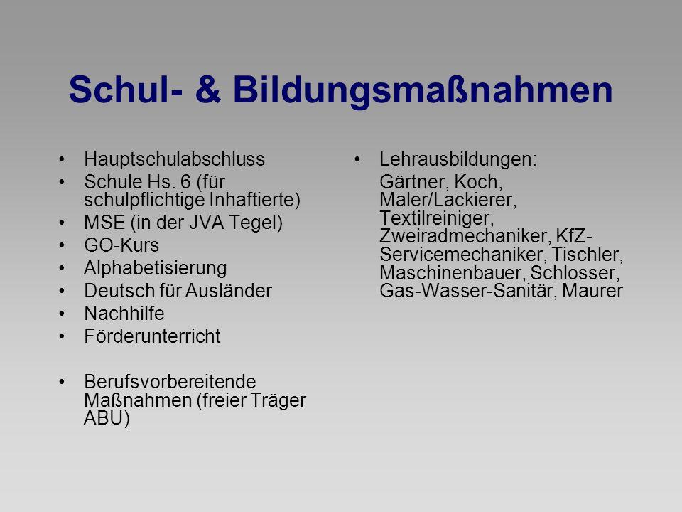 Schul- & Bildungsmaßnahmen Hauptschulabschluss Schule Hs. 6 (für schulpflichtige Inhaftierte) MSE (in der JVA Tegel) GO-Kurs Alphabetisierung Deutsch