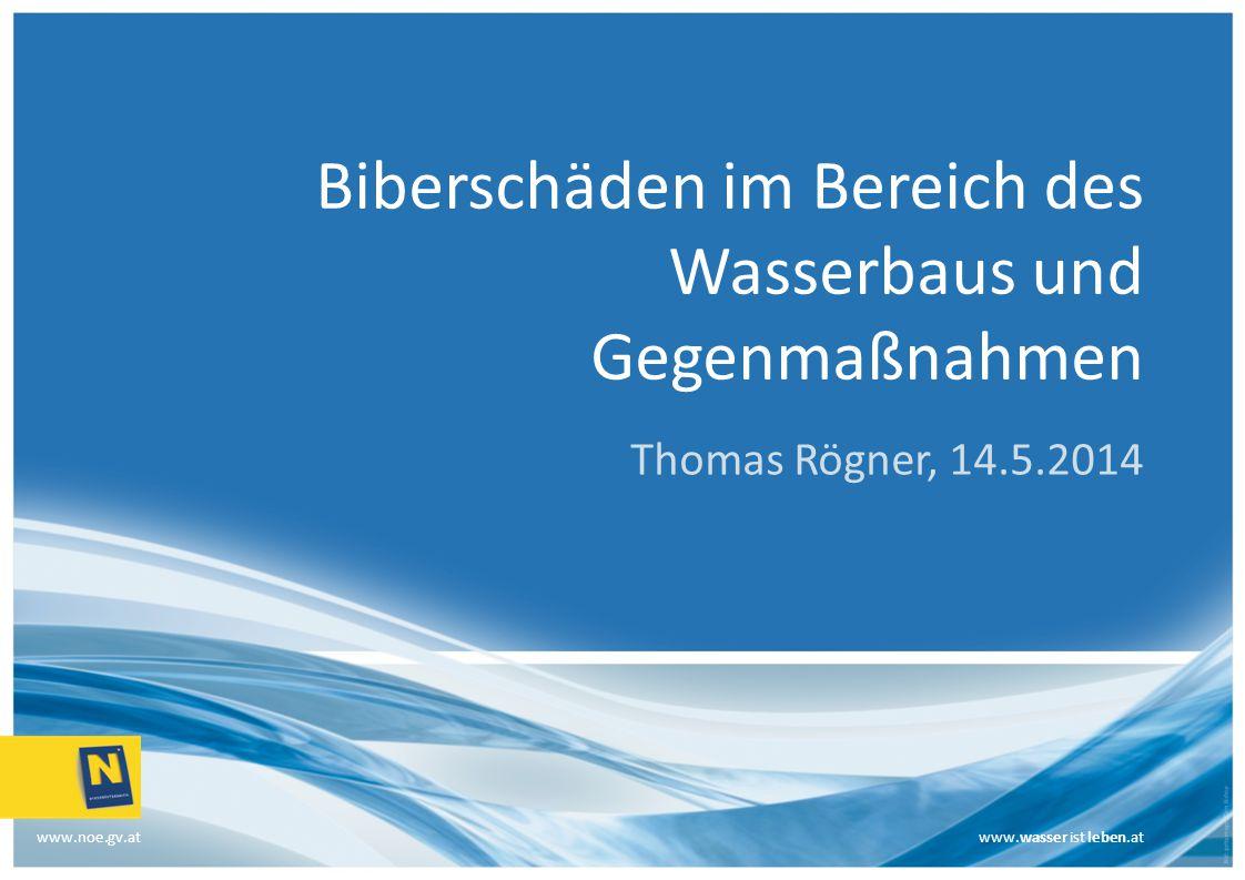 www.wasser ist leben.at www.noe.gv.atwww.wasser ist leben.at Biberschäden im Bereich des Wasserbaus und Gegenmaßnahmen Thomas Rögner, 14.5.2014