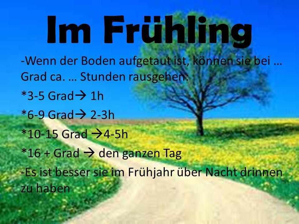 Im Frühling -Wenn der Boden aufgetaut ist, können sie bei … Grad ca. … Stunden rausgehen: *3-5 Grad  1h *6-9 Grad  2-3h *10-15 Grad  4-5h *16 + Gra