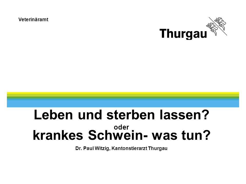 Veterinäramt Leben und sterben lassen? oder krankes Schwein- was tun? Dr. Paul Witzig, Kantonstierarzt Thurgau