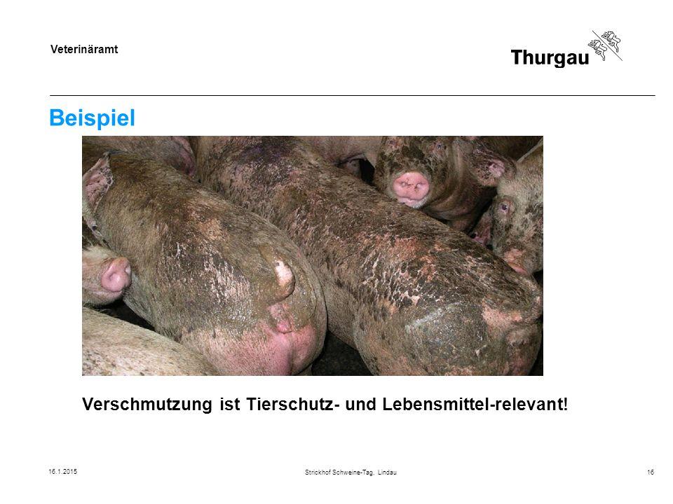 Veterinäramt Beispiel Strickhof Schweine-Tag, Lindau16 Verschmutzung ist Tierschutz- und Lebensmittel-relevant! 16.1.2015