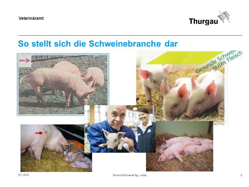 Veterinäramt So stellt sich die Schweinebranche dar 16.1.2015 Strickhof Schweine-Tag, Lindau2