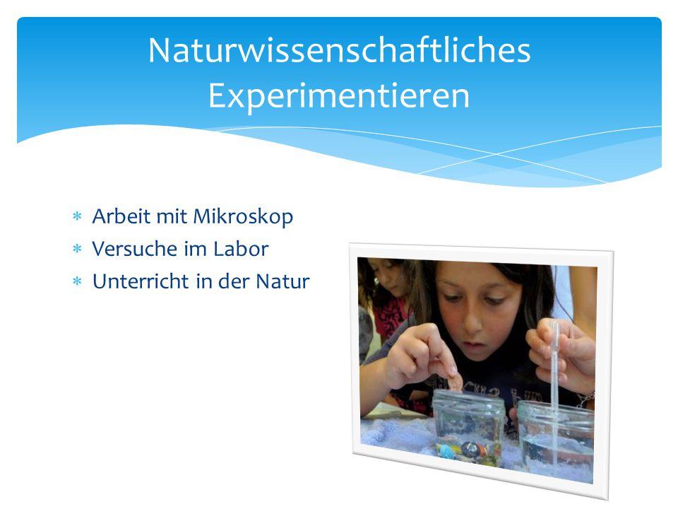  Arbeit mit Mikroskop  Versuche im Labor  Unterricht in der Natur Naturwissenschaftliches Experimentieren