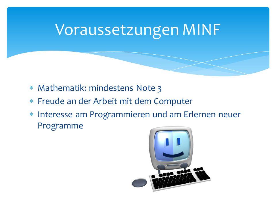  Mathematik: mindestens Note 3  Freude an der Arbeit mit dem Computer  Interesse am Programmieren und am Erlernen neuer Programme Voraussetzungen M