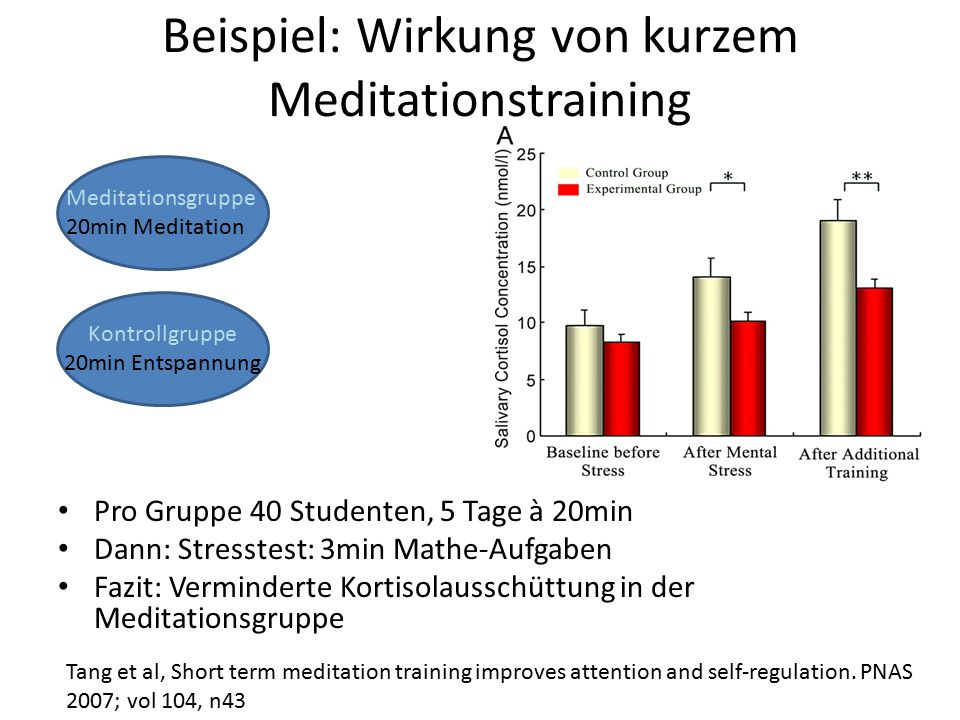Beispiel: Wirkung von kurzem Meditationstraining Pro Gruppe 40 Studenten, 5 Tage à 20min Dann: Stresstest: 3min Mathe-Aufgaben Fazit: Verminderte Kort