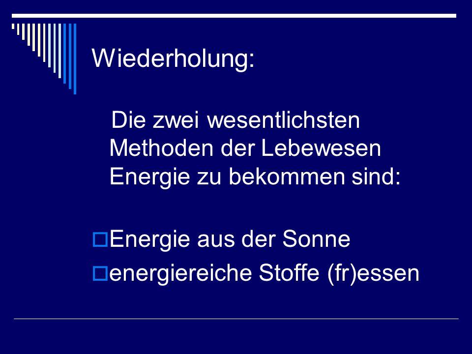 Die zwei wesentlichsten Methoden der Lebewesen Energie zu bekommen sind:  Energie aus der Sonne  energiereiche Stoffe (fr)essen Wiederholung: