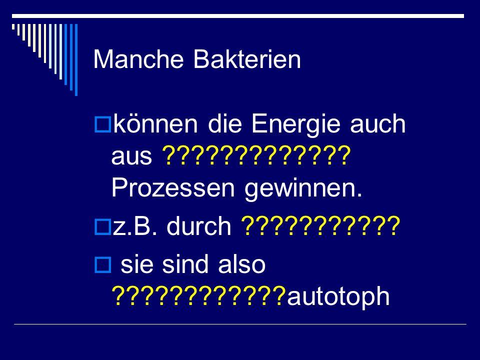 Manche Bakterien  können die Energie auch aus ????????????? Prozessen gewinnen.  z.B. durch ???????????  sie sind also ????????????autotoph