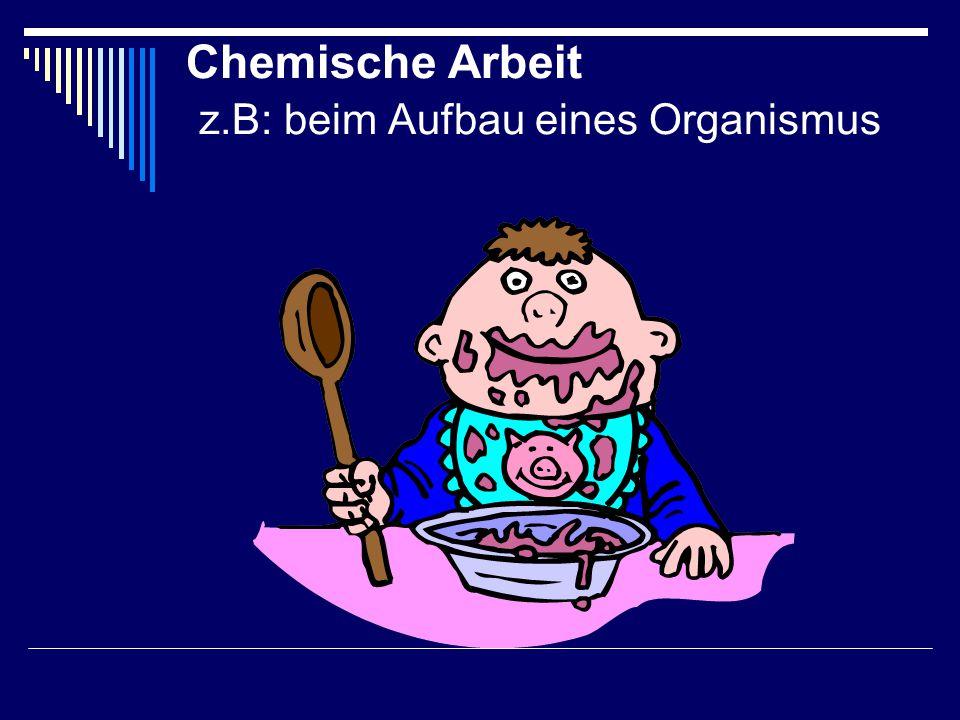Chemische Arbeit z.B: beim Aufbau eines Organismus