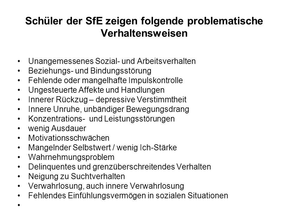 Schüler der SfE zeigen folgende problematische Verhaltensweisen Unangemessenes Sozial- und Arbeitsverhalten Beziehungs- und Bindungsstörung Fehlende o