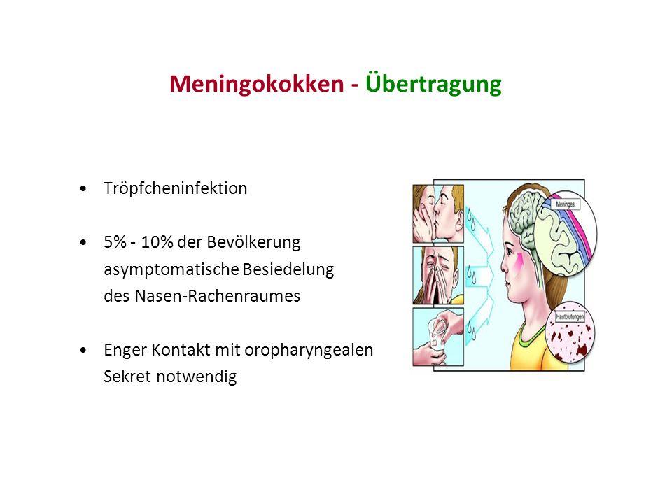 Relative Häufigkeit der Meningokokken-Erkrankung