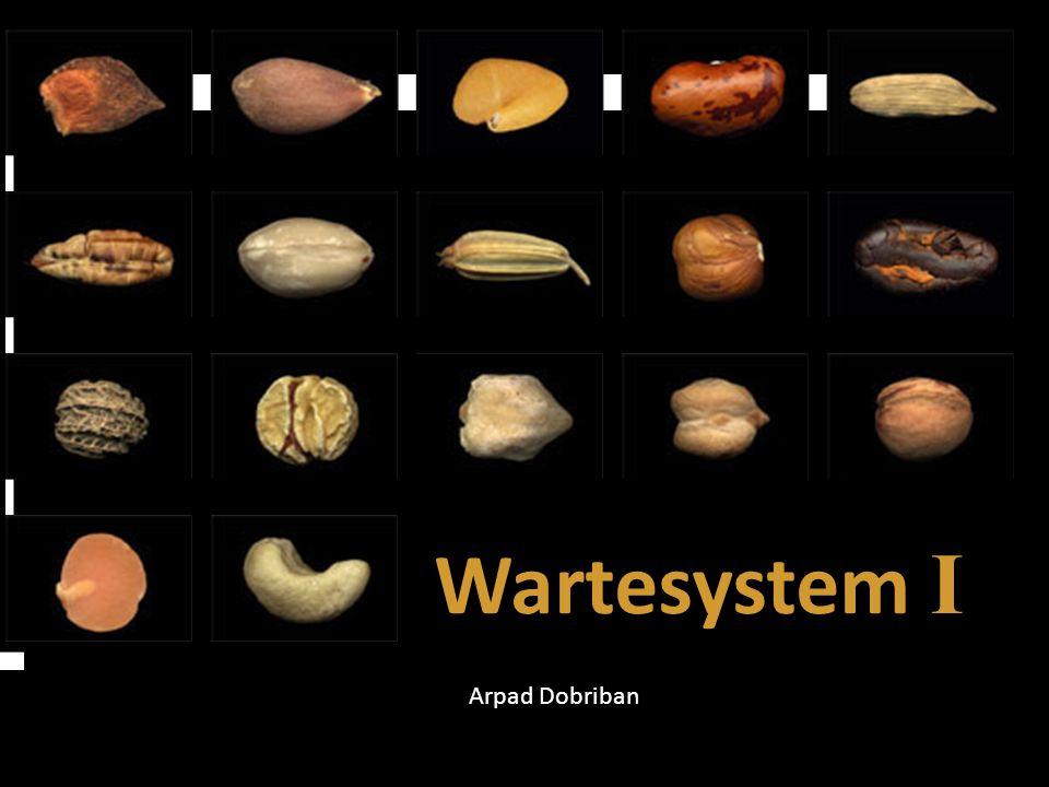 Wartesystem I Arpad Dobriban