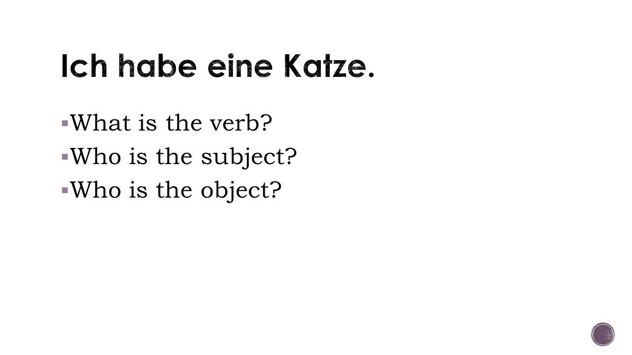  Example: Ich habe ein Kleid an. - neuter and direct object  1.