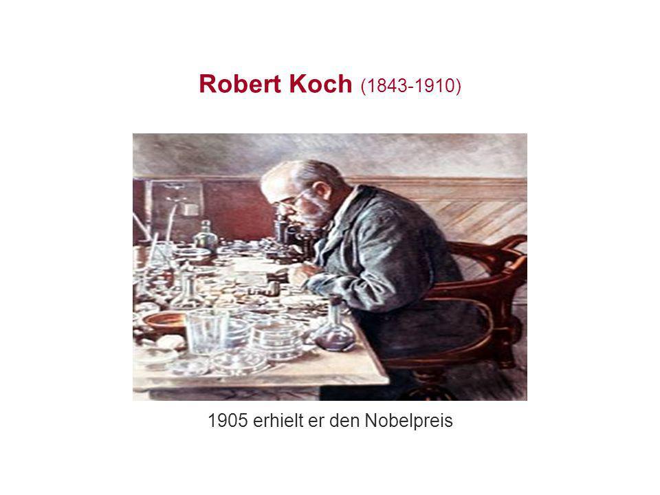 Robert Koch (1843-1910) 1905 erhielt er den Nobelpreis