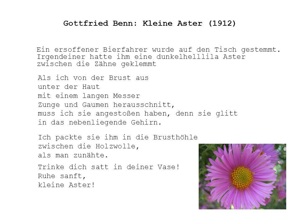 Gottfried Benn: Kleine Aster (1912) Ein ersoffener Bierfahrer wurde auf den Tisch gestemmt. Irgendeiner hatte ihm eine dunkelhelllila Aster zwischen d