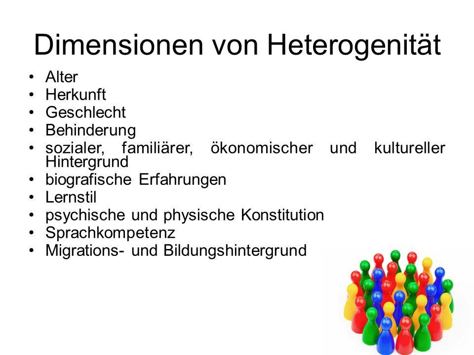 Dimensionen von Heterogenität Alter Herkunft Geschlecht Behinderung sozialer, familiärer, ökonomischer und kultureller Hintergrund biografische Erfahr