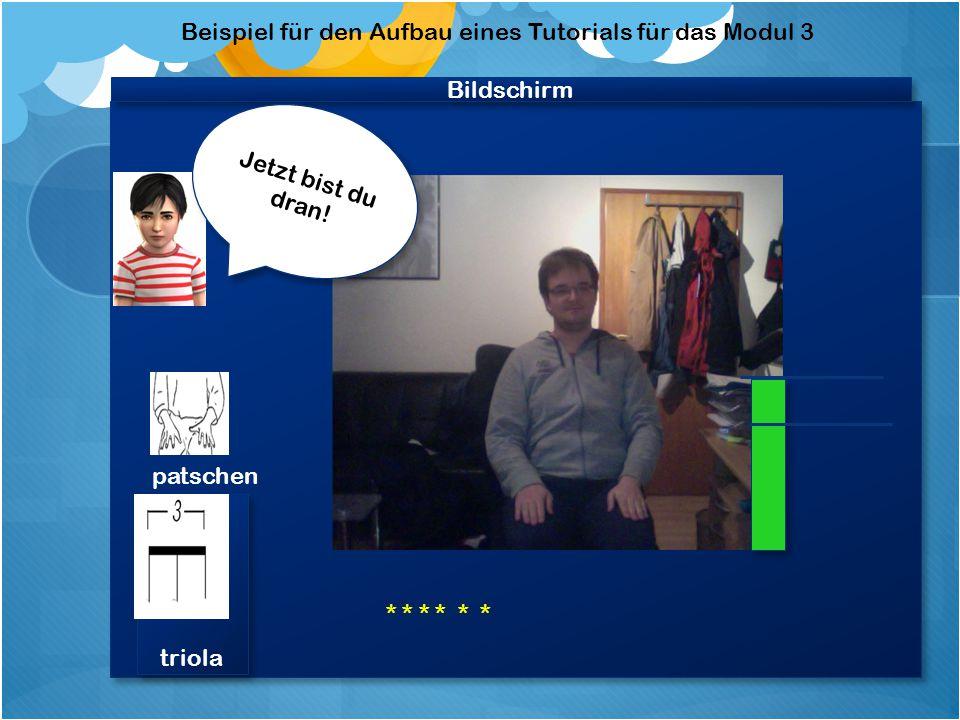 """Bildschirm Beispiel für den Aufbau eines Tutorials für das Modul 3 Video """"Felix patscht, spricht achtet auf die Lautstärke Video """"Felix patscht, spricht achtet auf die Lautstärke Achte darauf, dass sich der Balken nicht rot färbt."""