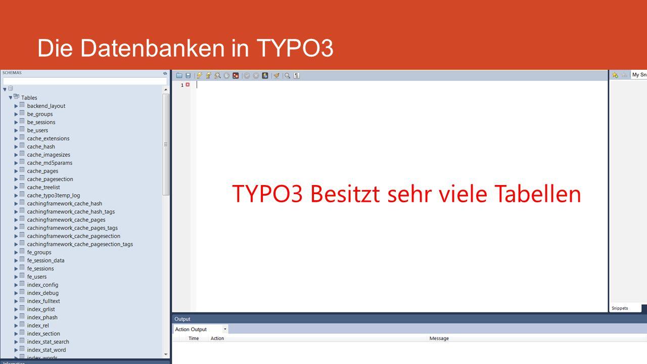 Die Datenbanken in TYPO3 Backlinks und Ranking TYPO3 Besitzt sehr viele Tabellen
