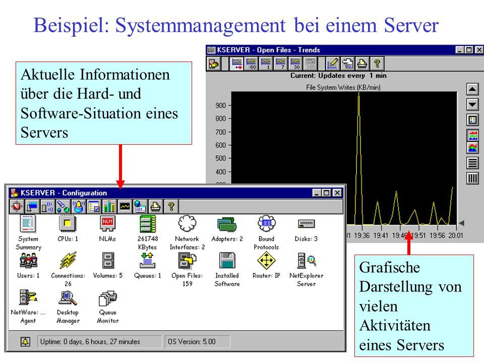 Beispiel: Systemmanagement bei einem Server Grafische Darstellung von vielen Aktivitäten eines Servers Aktuelle Informationen über die Hard- und Softw